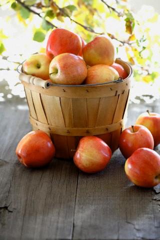 apple_2.jpg